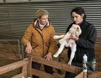 Hélène et les animaux : Travailler avec les animaux, une vocation