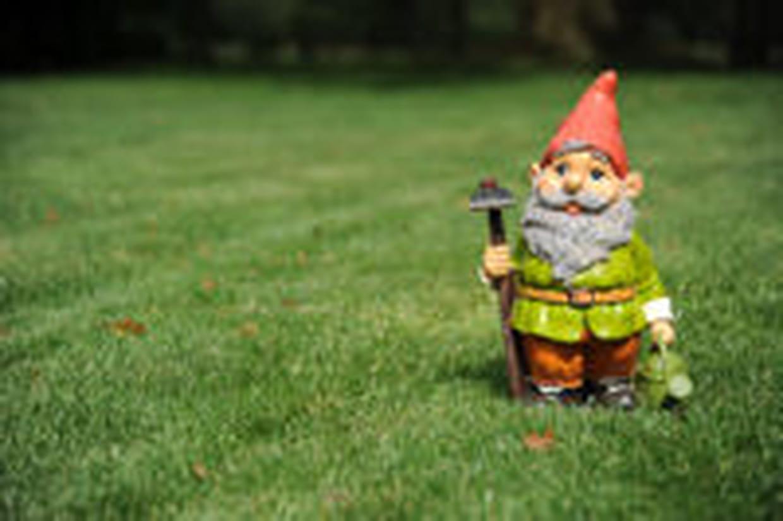 Nain de jardin : comment le choisir et où l\'acheter