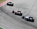 Formule 1 : Grand Prix de Sakhir - Grand Prix de Sakhir