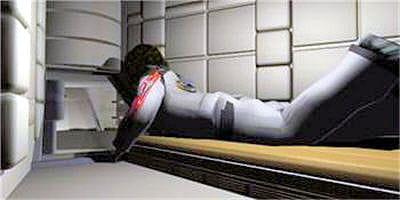 chaque membre d'équipage aura sa propre chambre à coucher.