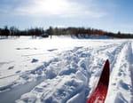 Ski alpin : Coupe du monde à Lenzerheide - 2e manche