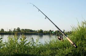 Canne à pêche: comment bien choisir, les bons modèles