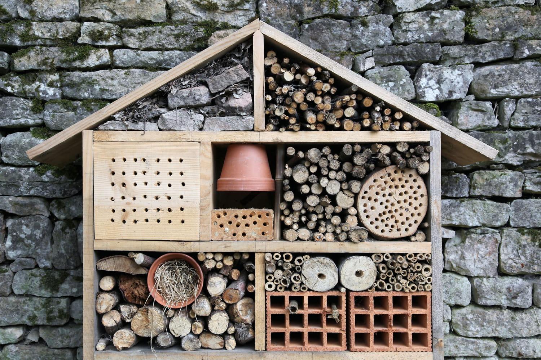 Hôtel à insectes: comment le construire
