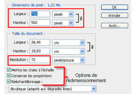 Redimensionner Une Photo Sur Photoshop