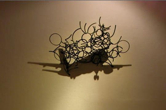 Les plus belles sculptures d'ombre