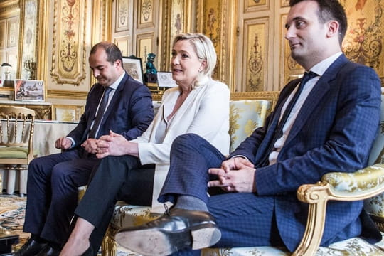 Gouvernement Marine Le Pen: Philipot Premier ministre?