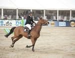 Equitation - Grand Prix du Prince de Monaco