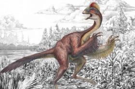 """Un nouveau dinosaure découvert : """"il ressemblait à un poulet géant"""""""