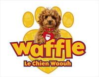 Coloriage Chien Militaire.Waffle Le Chien Waouh Bon Anniversaire Waffle Bon