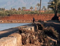 Jardins d'ici et d'ailleurs : Agdal (Maroc)