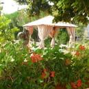 Restaurant Côté Jardin  - côté jardin -   © serge Lanoix