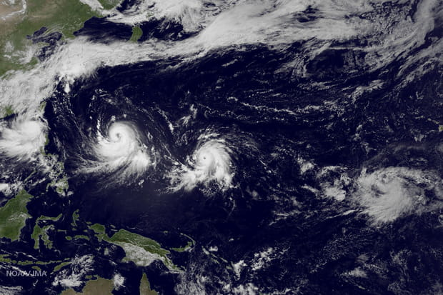 Des typhons au-dessus du Pacifique