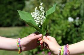 1er mai: pourquoi offrir du muguet le jour de la fête du travail?