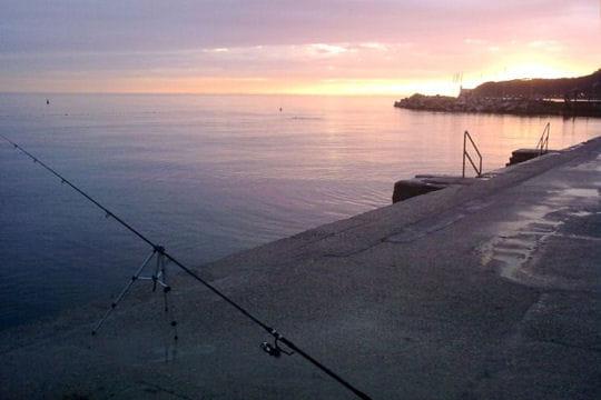 Trieste, la rivale