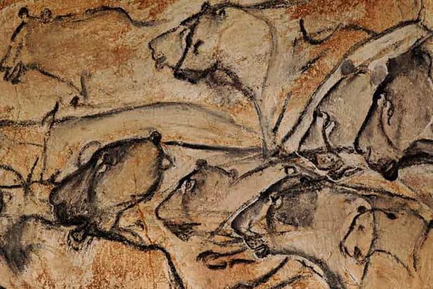 Les sites classés en 2014 : la grotte de Chauvet
