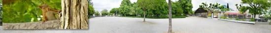 A la Boule du Petit Montmartre  - Cadre féeriquement reposant -