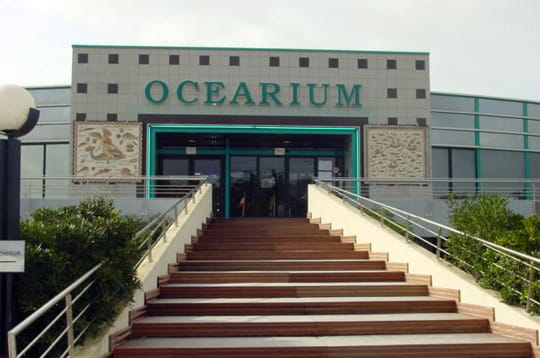 Océarium du Croisic: une promenade dans le monde marin
