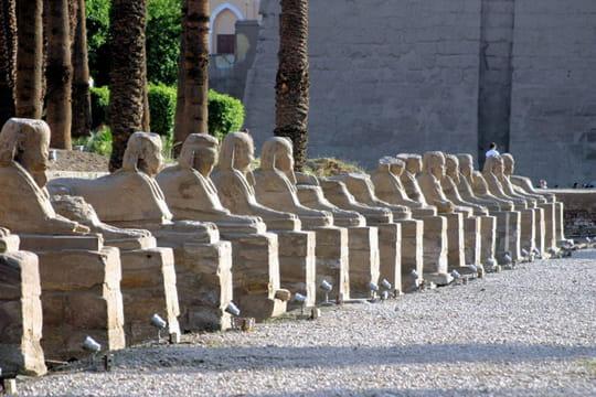 Allée des Sphinx à visages humains