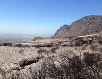 Sale temps pour la planète : Afrique du Sud, de sécheresses en déluges