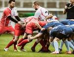 Rugby à XIII : NRL - Parramatta Eels / Manly-Warringah Sea Eagles