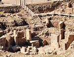 A la recherche des civilisations perdues