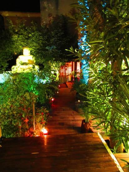 Restaurant L'Arôme - Jean-Jack Monti  - allée droite du patio -