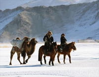 Equus : Une histoire de chevaux et d'hommes