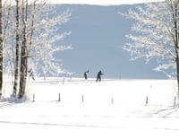 Ski de fond : Coupe du monde - Relais 4x5 km dames