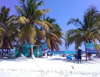 Belize, trésors fragiles