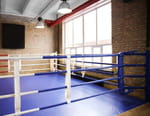 Premier Boxing Champions - David Morrell Jr / Mario Abel Cazares