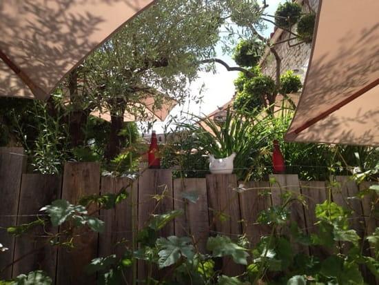 Restaurant : Le P'tit Rouquin  - Jardin côté vigne -