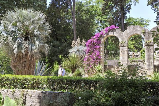 Le jardin des plantes de montpellier - Jardin des plantes de montpellier ...