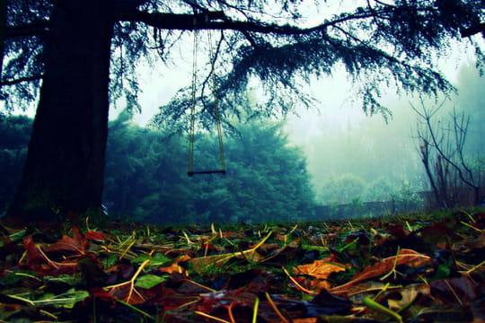 Forêt de l'enfance