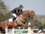 Equitation - CHI de Genève