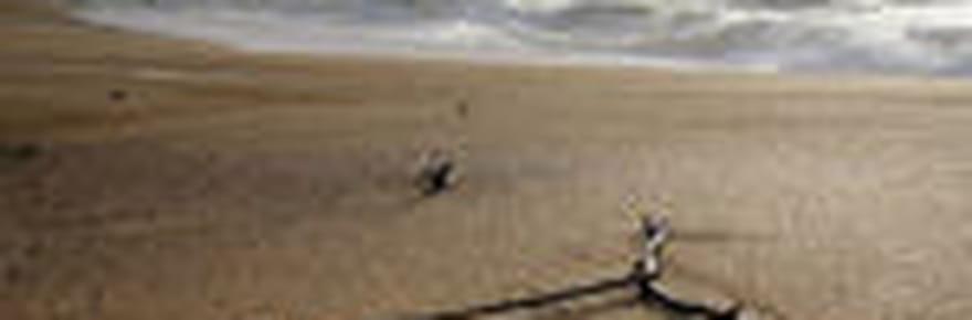 La côte basque, littoral sauvage