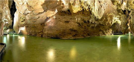 Organismes vivants grottes