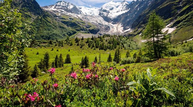 Mont Blanc: altitude, tour, ascension, tunnel, le guide