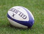 Rugby - Argentine / Afrique du Sud