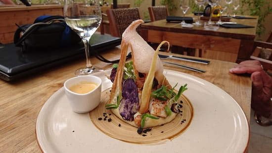 Gaïa  - Scalops -   © Restaurant_Gaïa