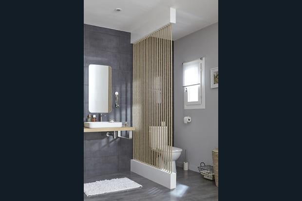 s parer les toilettes du lavabo. Black Bedroom Furniture Sets. Home Design Ideas