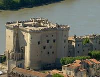 Des racines et des ailes : Passion patrimoine : Au fil du Rhône, entre Camargue et coteaux du Lyonnais