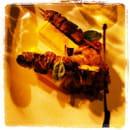 Plat : Col Tempo  - Brochette d'agneau et polenta -