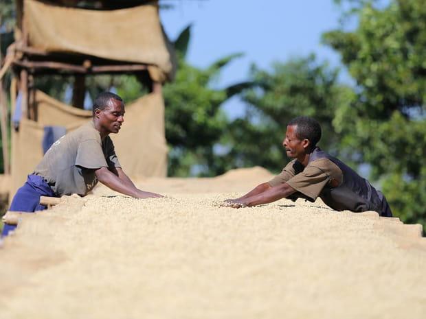 Ethiopie, une tradition ancestrale