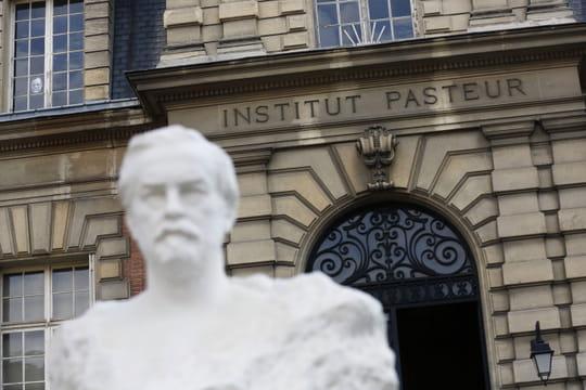 Vaccin Pasteur: un spray nasal à la place d'une injection?