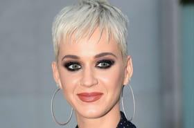 """Katy Perry: pour Swish Swish, un clip avec """"La Montagne"""" de GoT"""