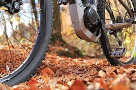Vélo électrique: bien choisir son modèle, les bonnes affaires