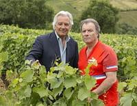 Le sang de la vigne  : Le vin nouveau n'arrivera pas