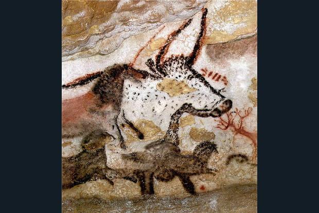 Premier taureau Lascaux