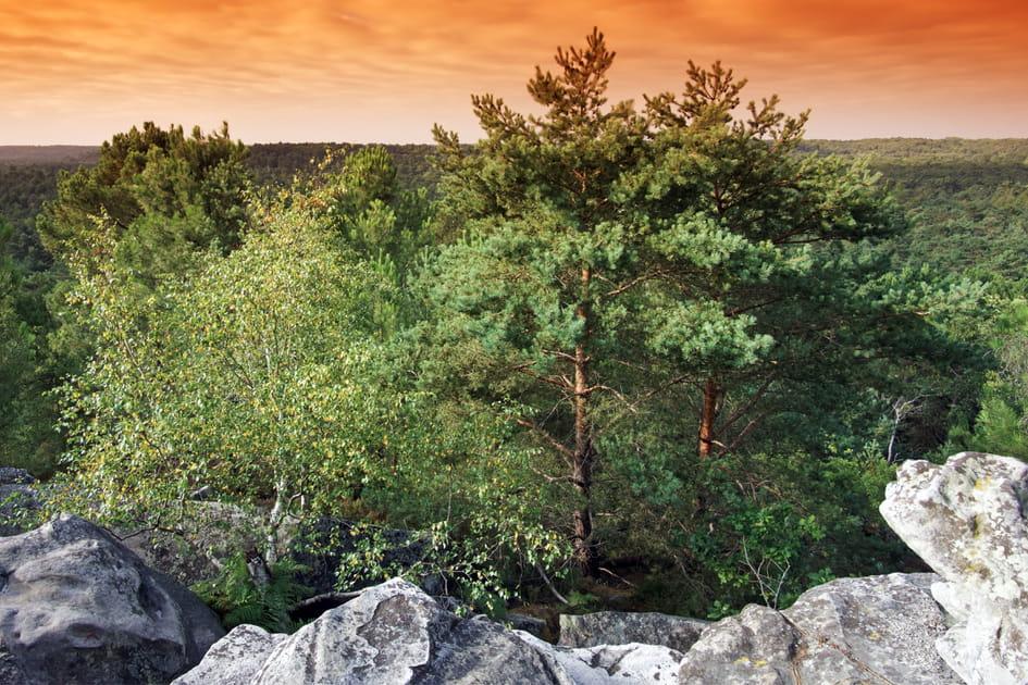 Le Parc Naturel Régional du Gâtinais, Essonne