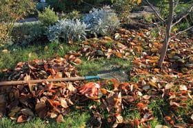 Nos conseils pour bien préparer votre jardin et terrasse pour l'hiver